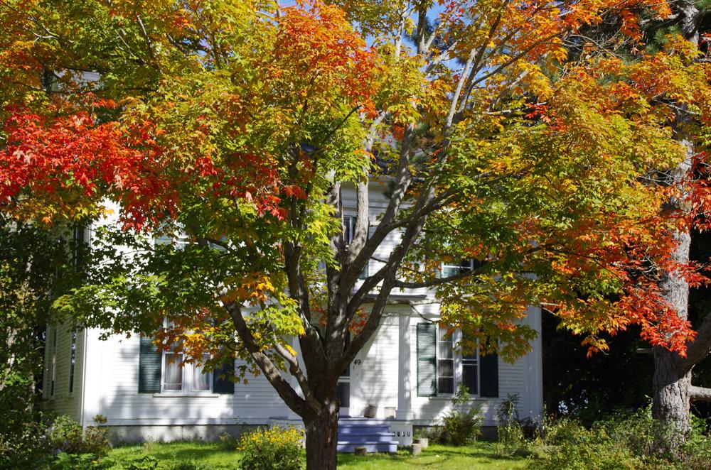 Typisches Motiv in Neuengland im Herbst.
