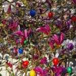 In in einem Baum in einem Vorgarten hängen farbige Plastik-Ostereier.