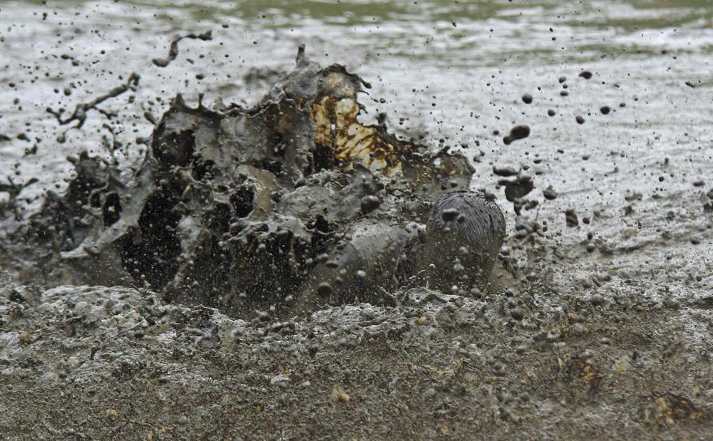 Tough Mudder: Ein Teilnehmer durchquert einen der vielen Schlammtümpel auf der Strecke.