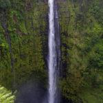 Die Akaka Falls (rd. 135 Meter) an der Hamakua Coast auf Big Island, Hawaii.
