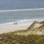 Spaziergänger am Strand am Lister Ellenbogen auf der Insel Sylt.