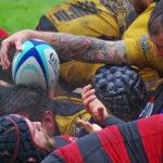 Rugby-Bundesliga: Bei Dauerregen kämpfen Spieler vom Hamburger Rugby-Club (rot-schwarz) gegen den RK 03 Berlin (gelb-schwarz) um das Ei.